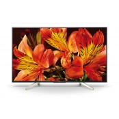TV LED  SONY  KD43XF8596BAEP