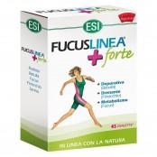 Fucuslinea® + Forte 45 Ovalette 36,9 g