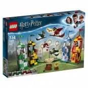 Harry Potter  Partita di Quidditch  75956
