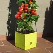 Vaso a torre per piante e ortaggi