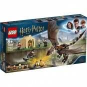 Harry Potter La sfida dell'Ungaro Spinato al Torneo...