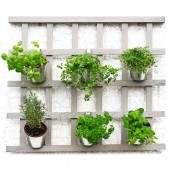 Griglia portapiante da muro con 6 vasetti in metallo