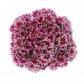 Mazzo 12 Crisantemina bianco/fucsia